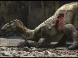 Прогулки с динозаврами 11-11